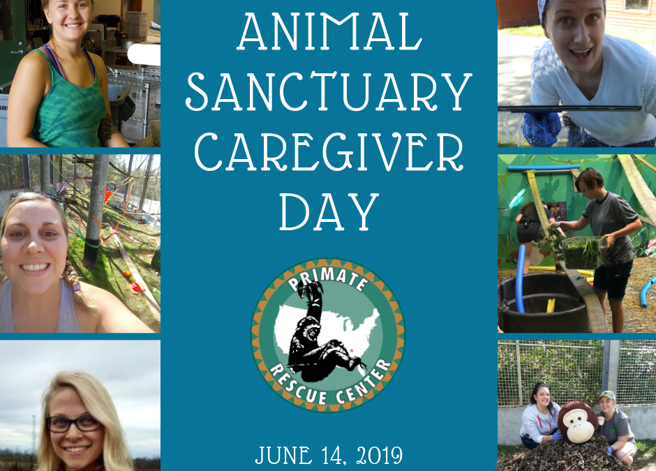Celebrating Animal Sanctuary Caregiver Day