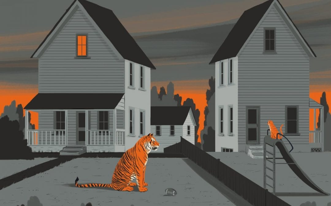 The tiger next door: America's backyard big cats