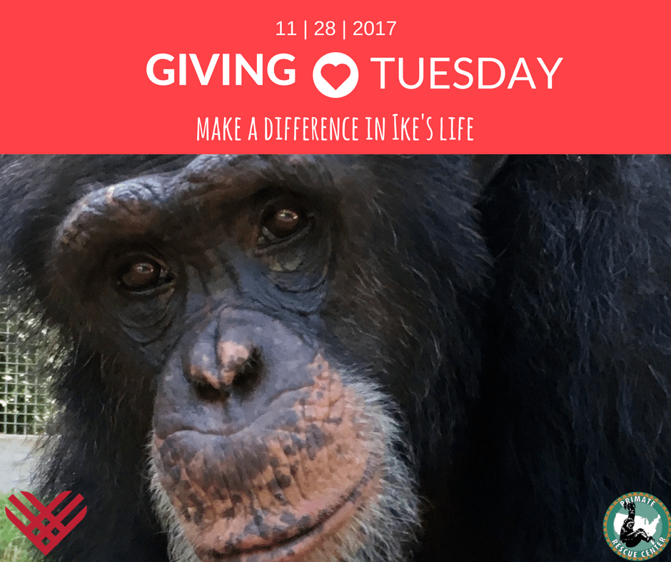 The Season for Giving…to Primates!