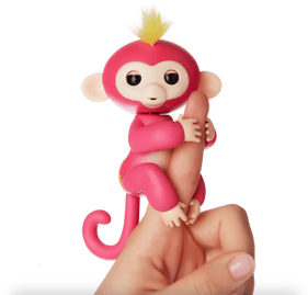 Toy Pet Monkeys: Helpful or Harmful?